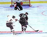 история хоккея  хоккей